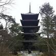 教王護国寺 東寺 五重塔 / To-ji Temple pagoda