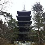 京都観光・旅行の準備中